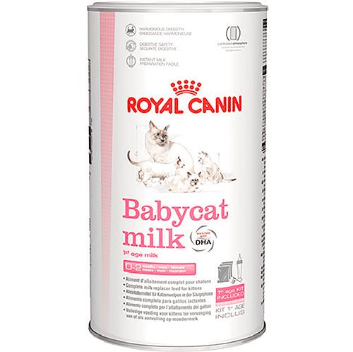 ROYAL CANIN - BabyCat Milk